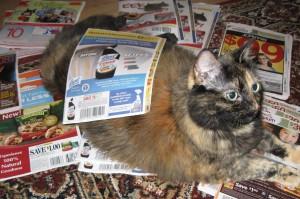 cat_coupons